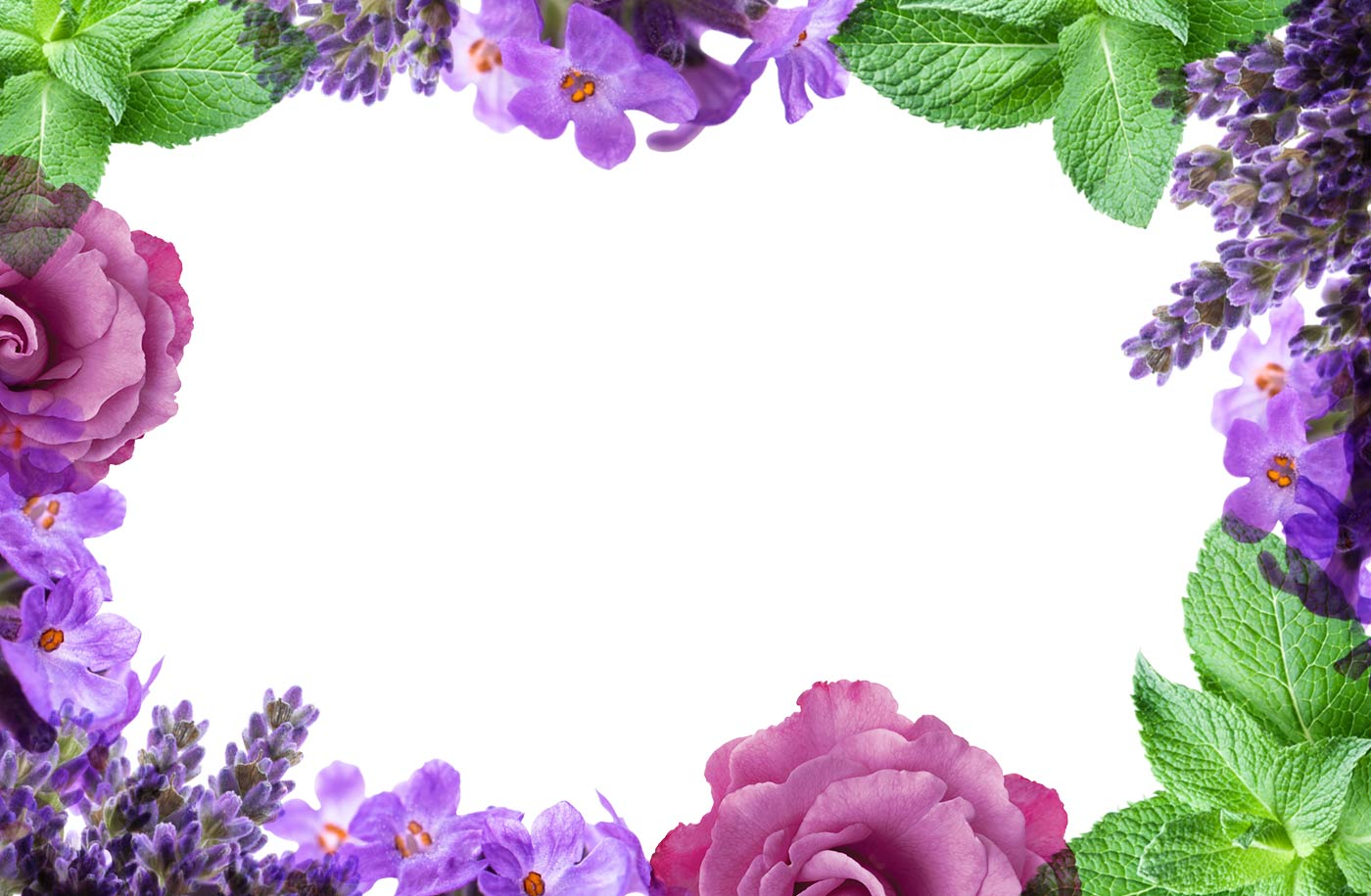 bath-and-body-lavender-banner