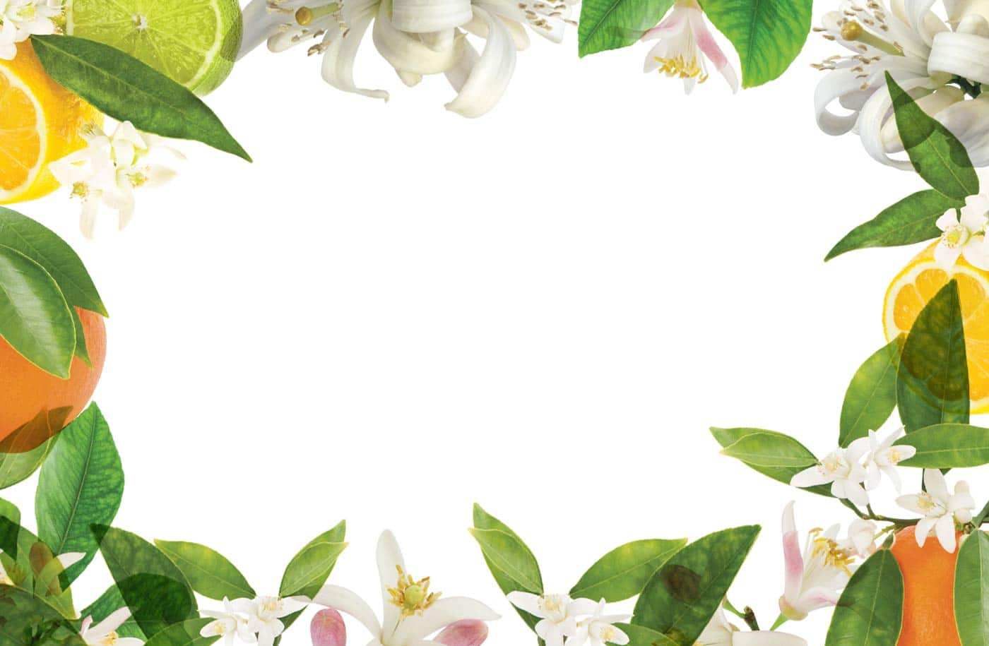 bath-and-body-neroli-banner
