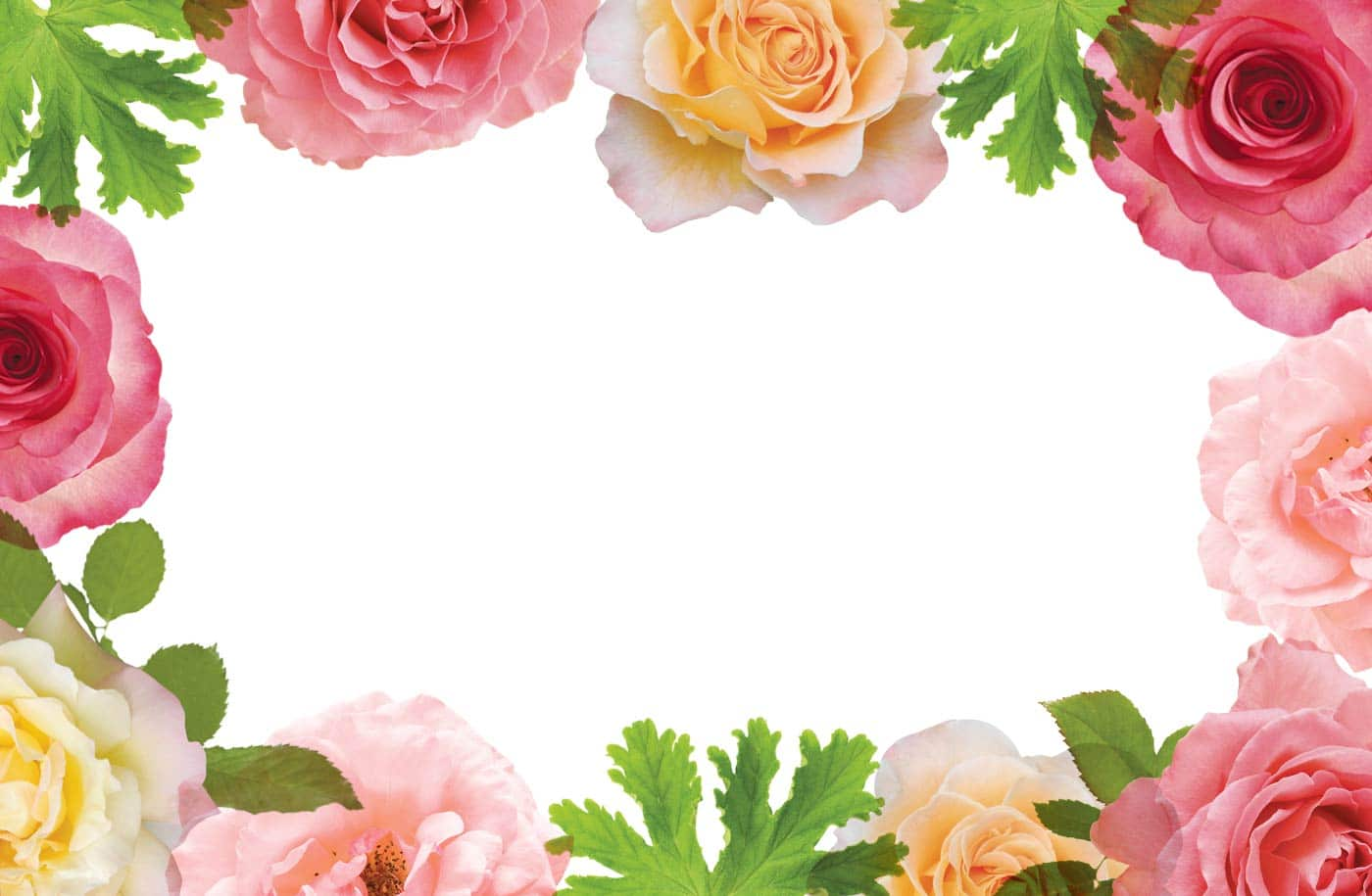 bath-and-body-rose-banner