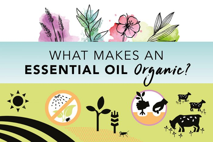 What makes an essential oil organic?