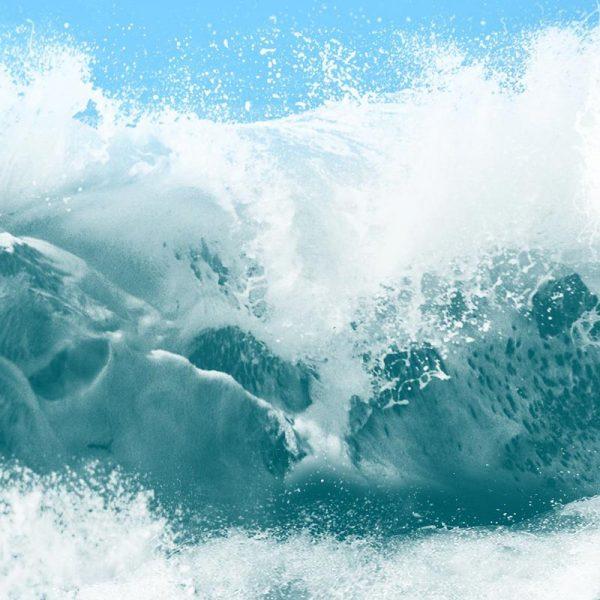 Ocean Calling